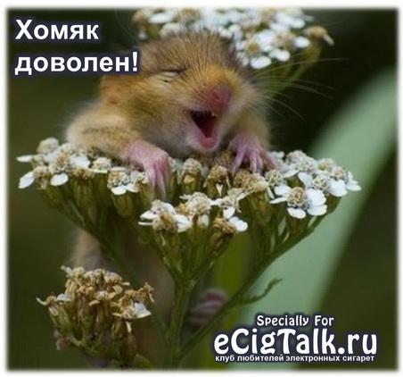 khomiak.jpg